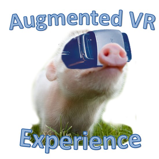 Picture of Augmented VR Experience Demo